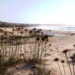 einsame Sanddüne auf Boavista