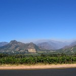 Kapprovinz Winelands