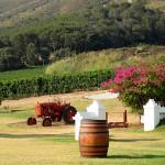 Garten einer Weinkellerei