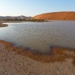 Wasser im Sossusvlei