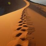 Big Daddy - Spuren im Sand