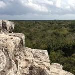 Stufen von Nohoch Mul über dem Dschungel