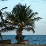 Palmstrand Sian Ka'an